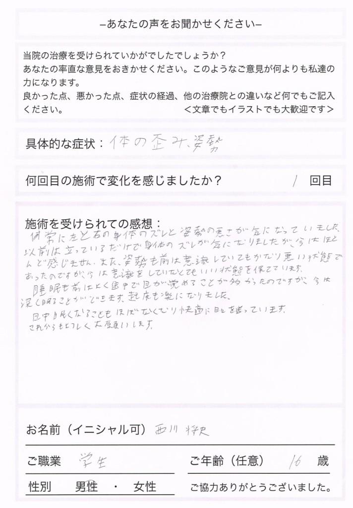 nishikawa masahumi
